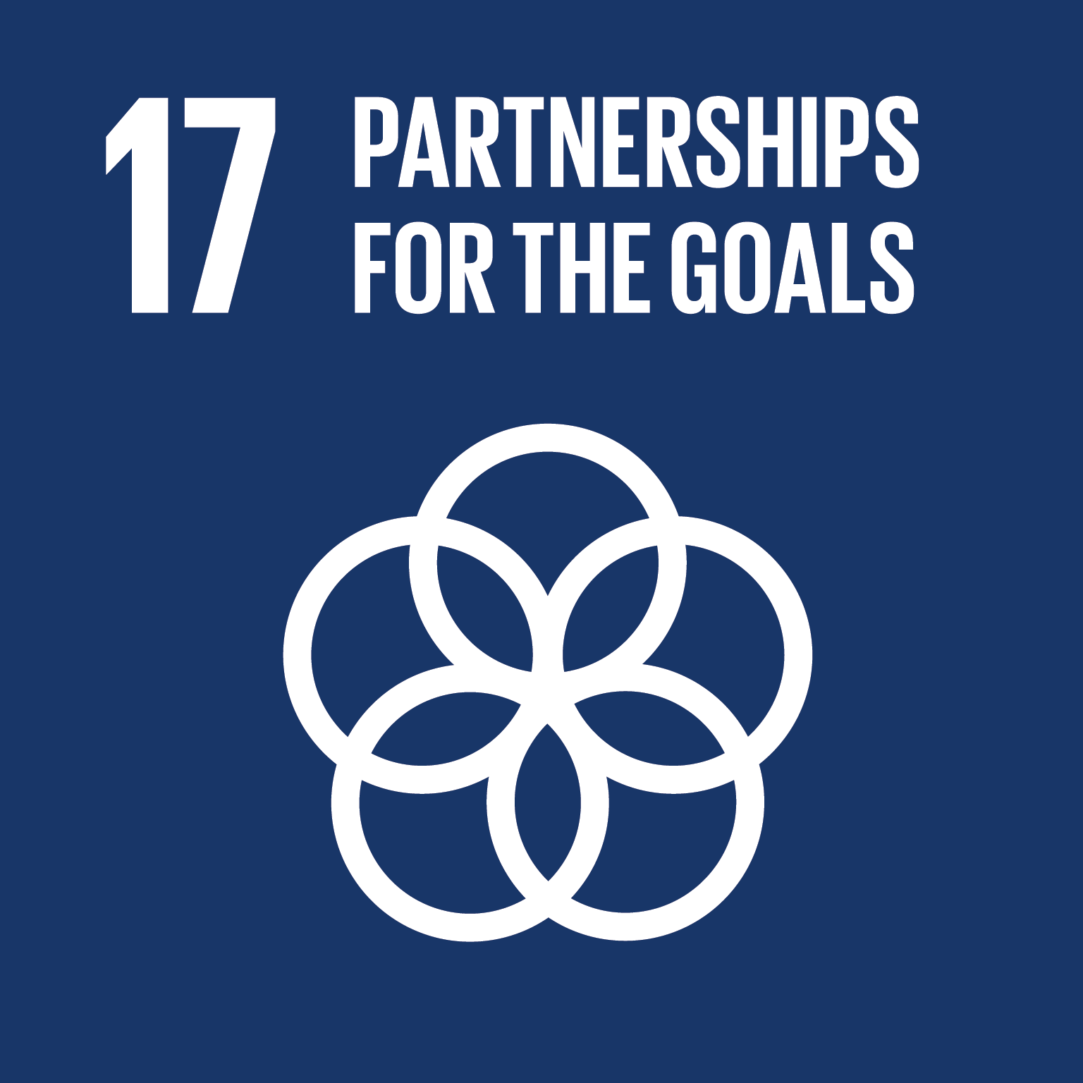Partnerships for the goals logo.